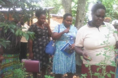 A group member explaining the possible diseases cured by her medicinal plant